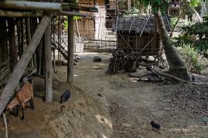 Chin village path